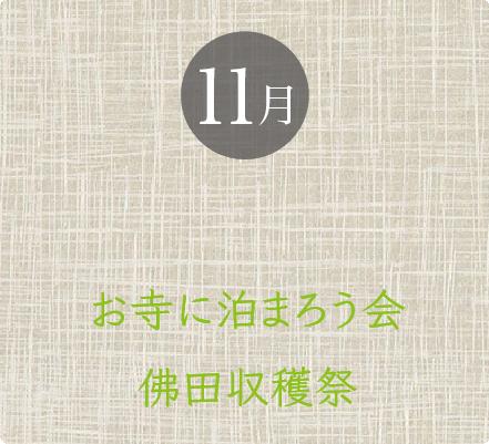 11月 弘前坐禅会 お寺に泊まろう会 佛田収穫祭